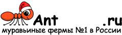Муравьиные фермы AntFarms.ru - Кемерово